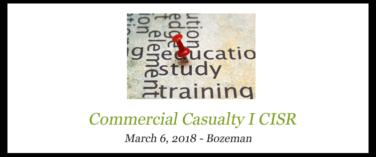 Commercial Casualty I (CISR)